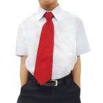 Camisa Social Infantil Manga Curta